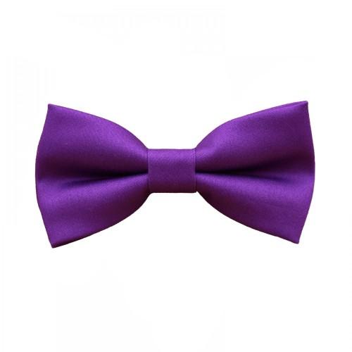 Purple Men's Pre-Tied Bow Tie